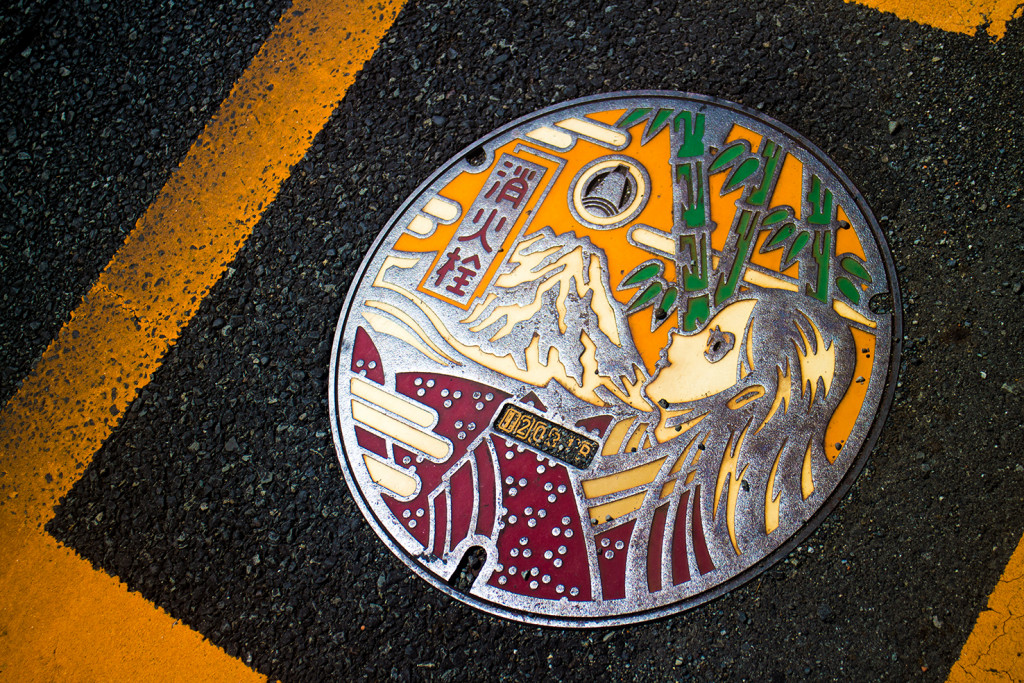 Drain covers in Japan are pretty nice.