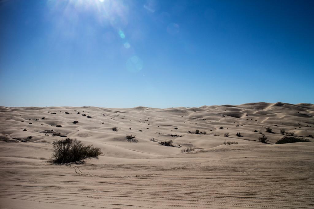 Proper desert.